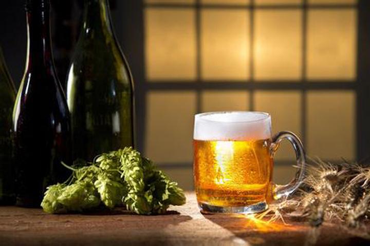 啤酒酿造中经常使用的香料和辅料