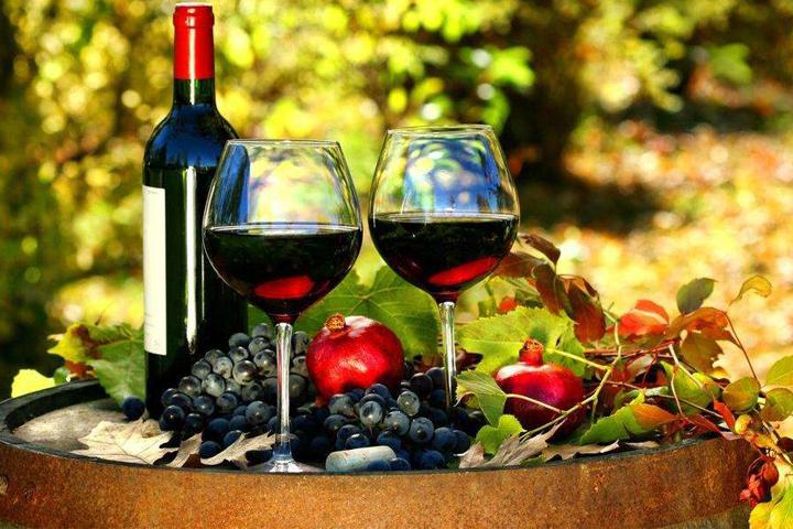 葡萄酒发酵中酵母对营养需求的研究进展