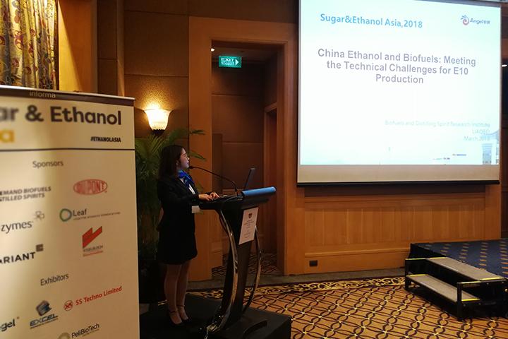 安琪在第十二届亚洲糖和乙醇论坛上发言
