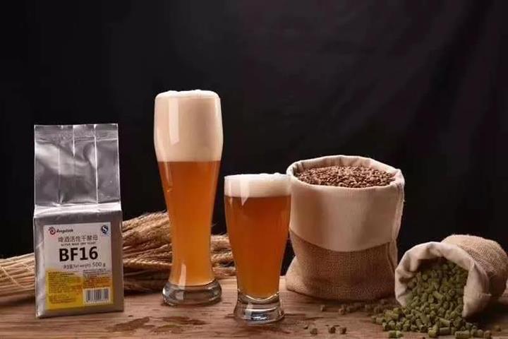 感谢自己在2年前选择了精酿啤酒这份事业