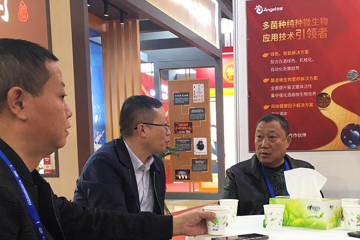 安琪亮相第十五届中国国际酒博会